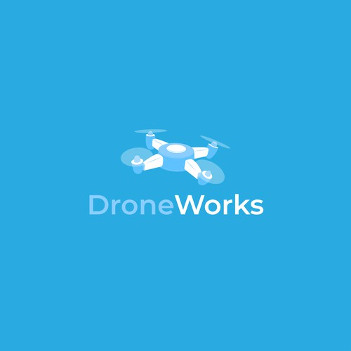 Logo Concept for a drone photographer