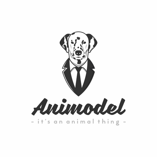 Fun and playful logo concept for Animodel