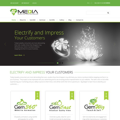 Multi -Media Website