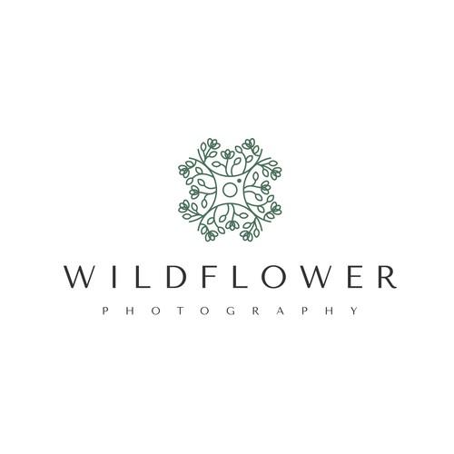 Wildflower Photography