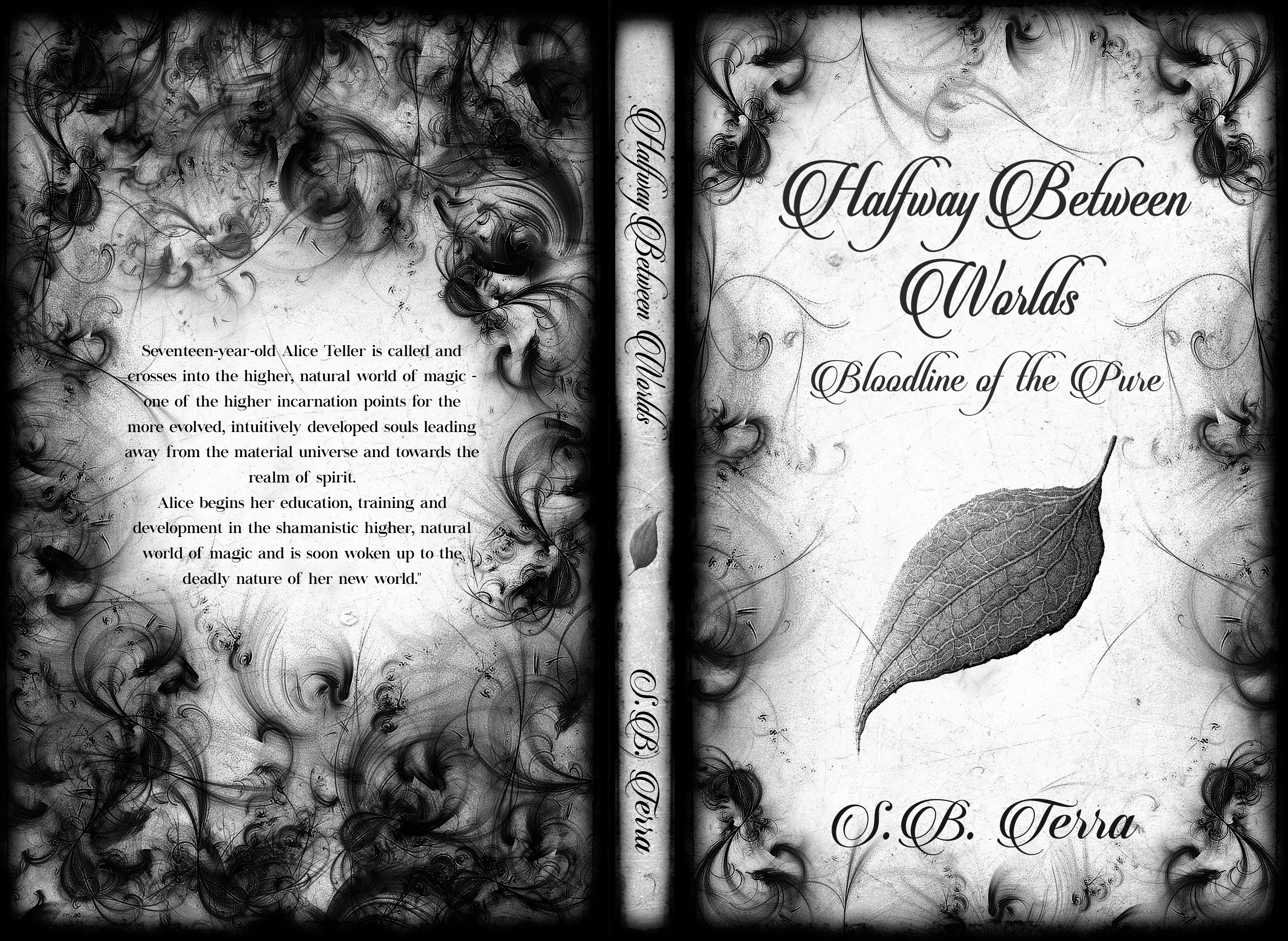 Design an elegant, dark, mysterious paperback + eBook cover for a shamanistic, witchcraft fiction. (Artwork provided)