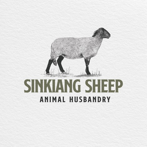 Sinkiang Sheep