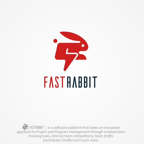 UNIQUE FAST RABBIT!!