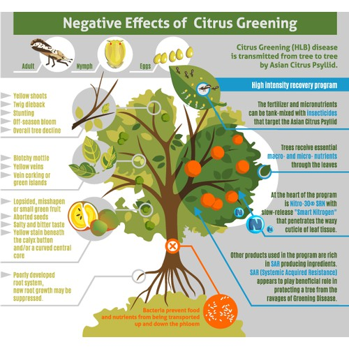 Sick / Healthy Citrus Tree Illustration