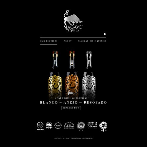 Magave Tequila Web Designs