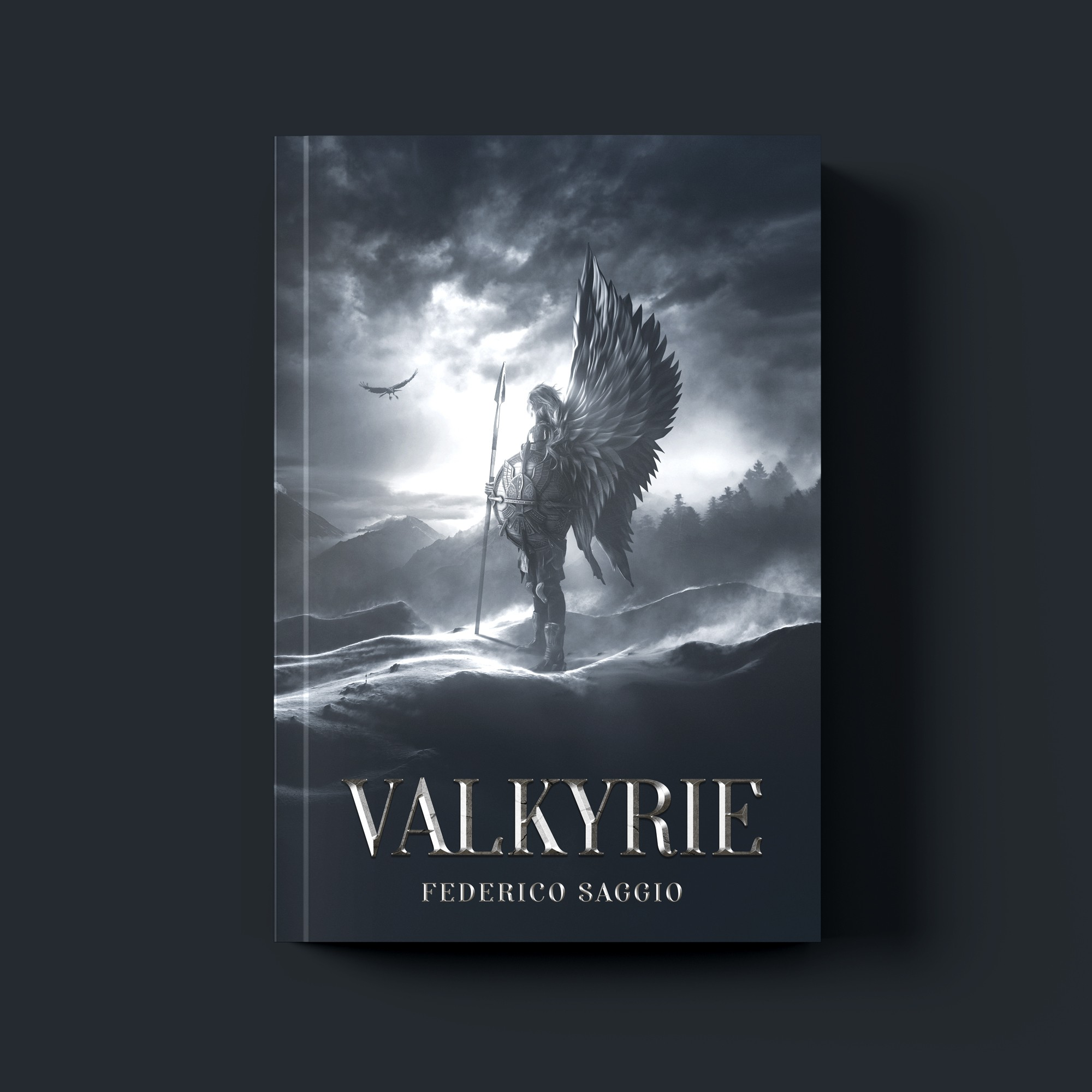 Valkyrie _ Book Cover