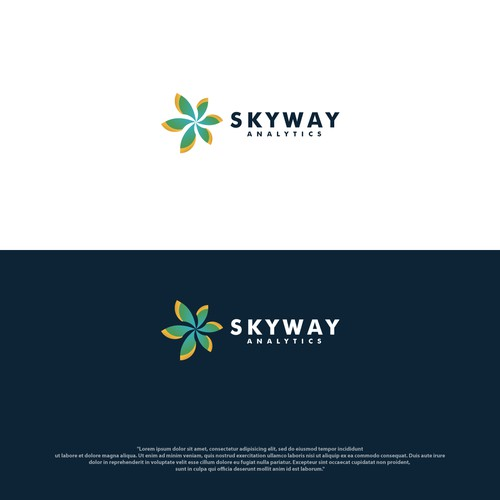 Skyway Analytic