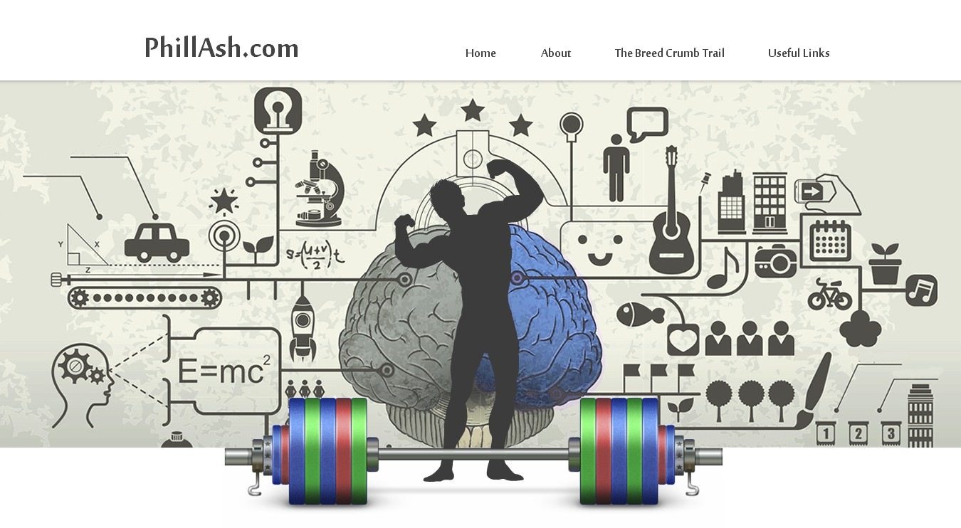 Memory and weight lifting word press blog design
