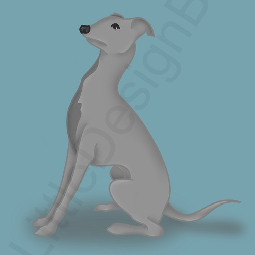 Italian Greyhound Illustration For Apparel Company