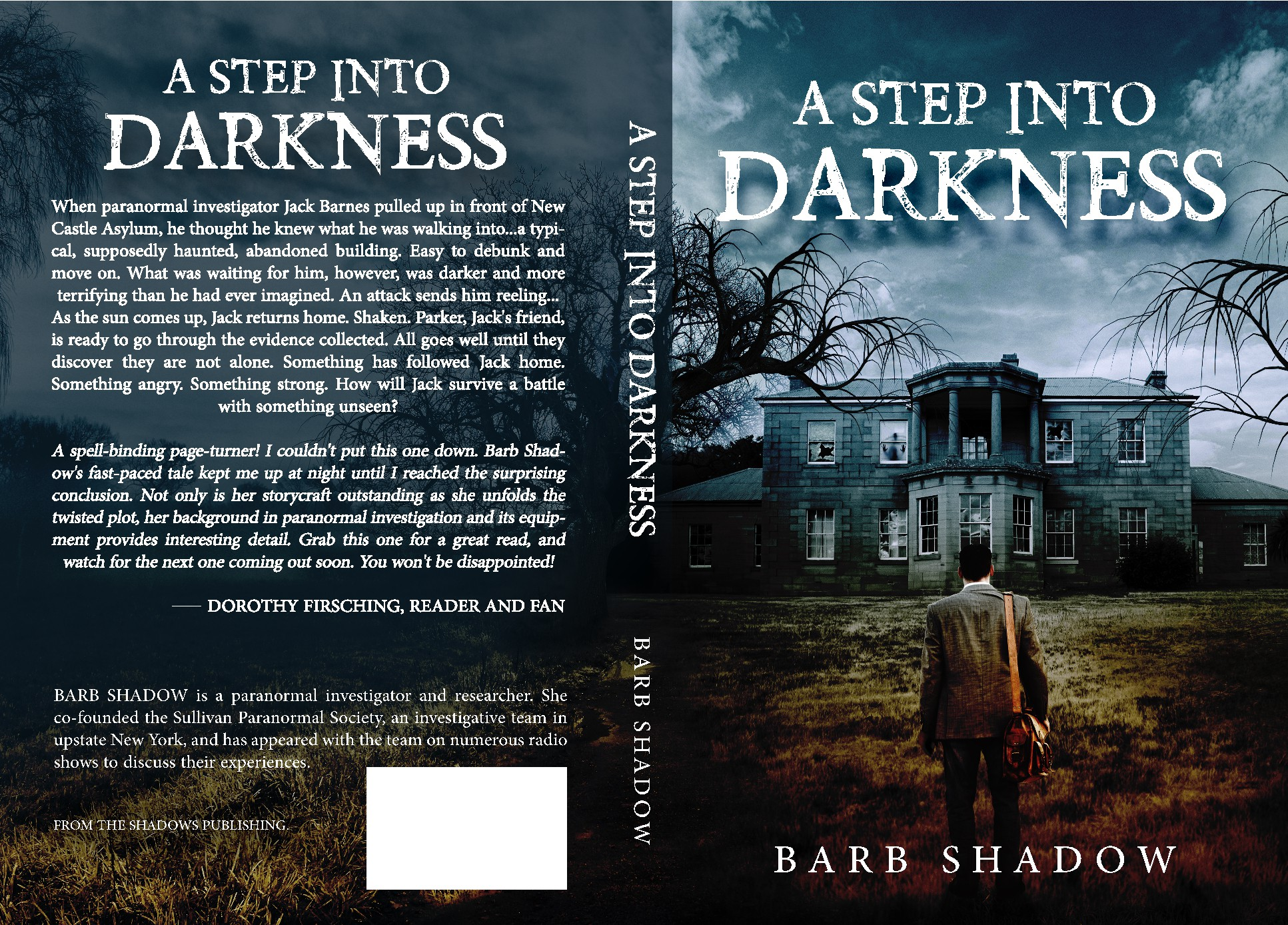 Design a dark and creepy book cover for A Step Into Darkness.