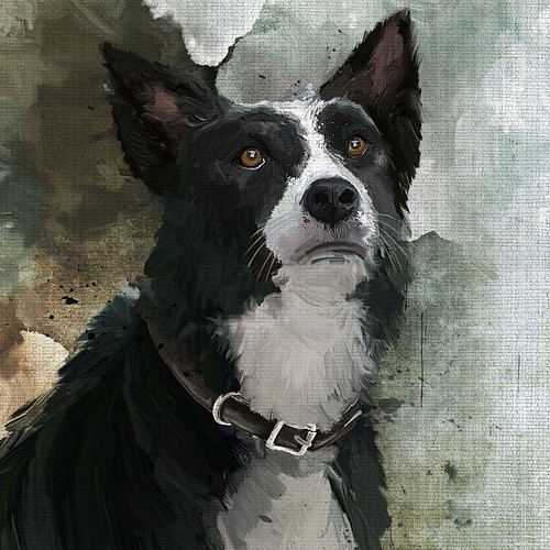 Dog stylized picture