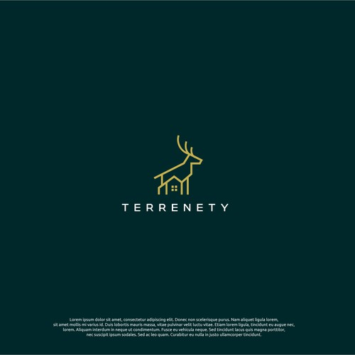logo concept for terrenety