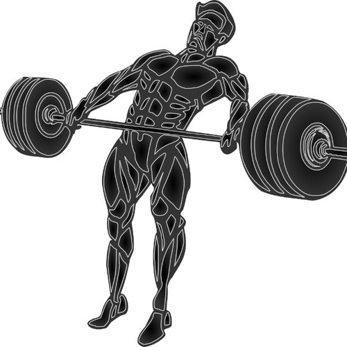 illustration for Barbell Strong
