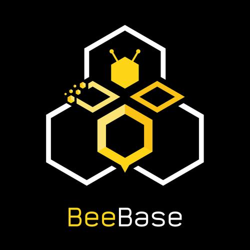 Online Job Platform: BeeBase