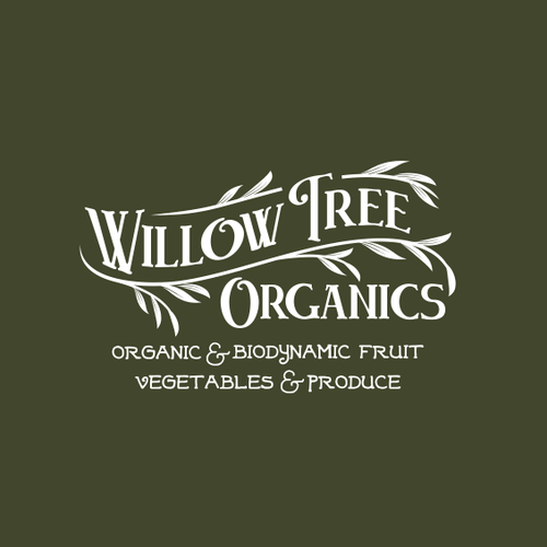 Vintage logo for Organic Store
