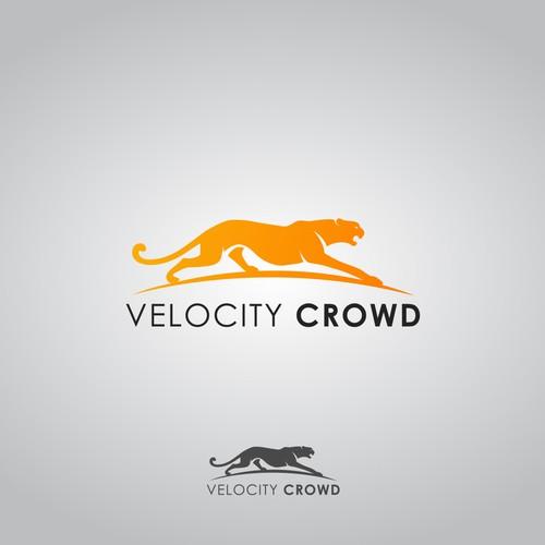 Velocity Crowd