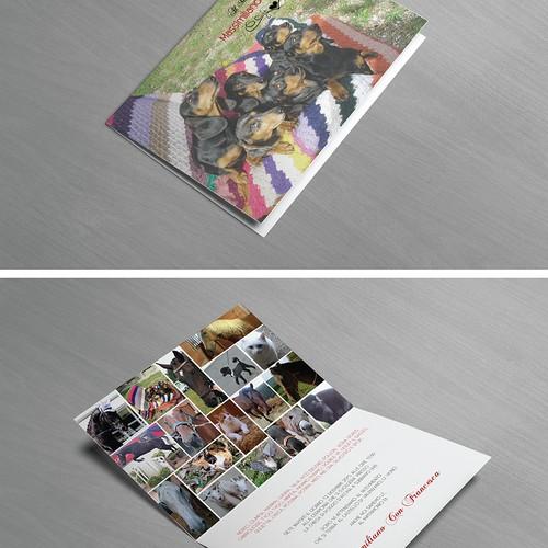 Animal Collage Wedding Invitation