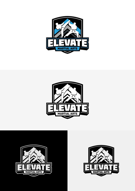 Martial Arts Academy Needs New Logo and Brand!!