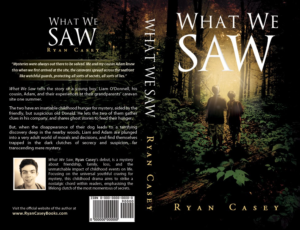 Book Cover Wanted - 'What We Saw' - Nostalgic Mystery Novel