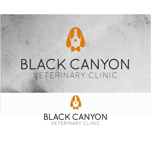 Logo Concept for a veterinary clinic