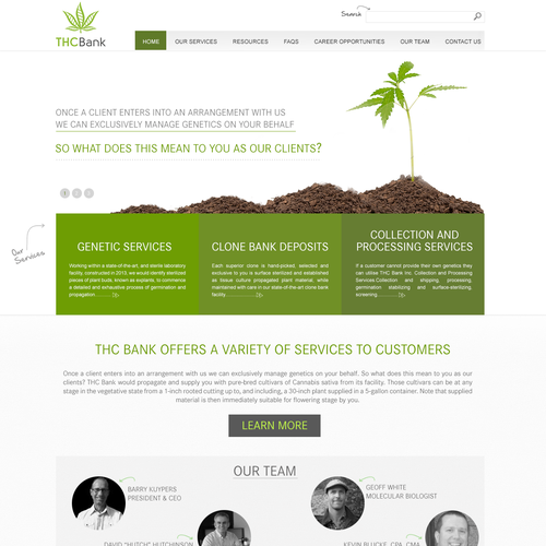 Website for a Medical Marijuana Scientific Company