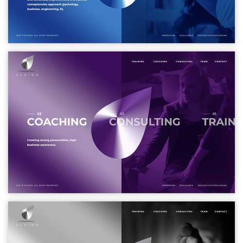 Wordpress theme for TOP LEVEL CONSULTING COMPANY