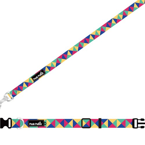 Modern Dog Leash/Collar Design