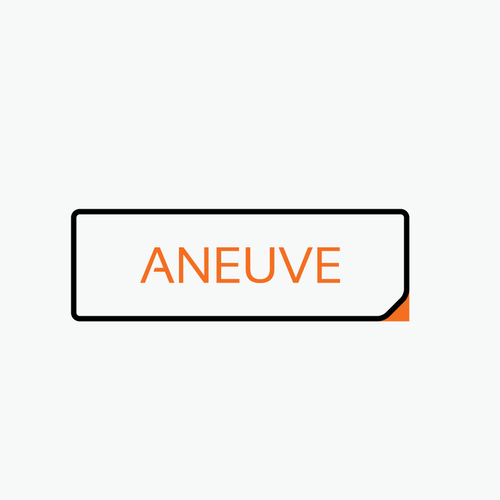 "Flat Text based logo for ""aneuve"" - means ""a new"" or just ""new"""