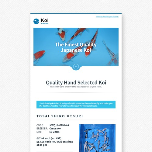Email design
