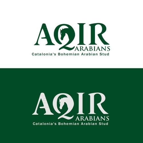 Aquir Logo Design