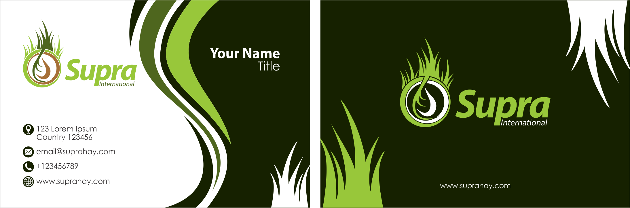 New logo and future design projects for agriculture seed company.