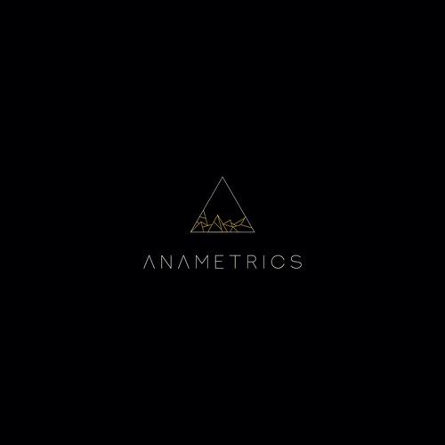 Anametrics