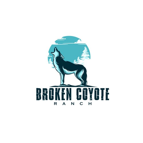 Broken Coyote
