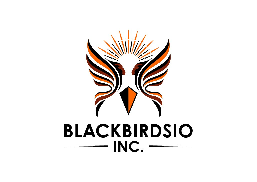 Create afroturistic BlackBirds to help in the fight for transparency in our government