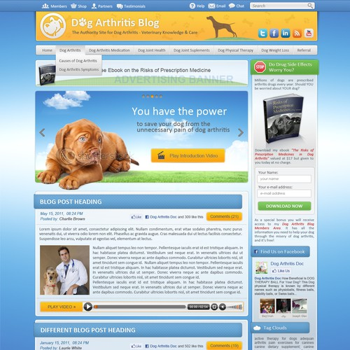 Dog Arthritis Wordpress Theme