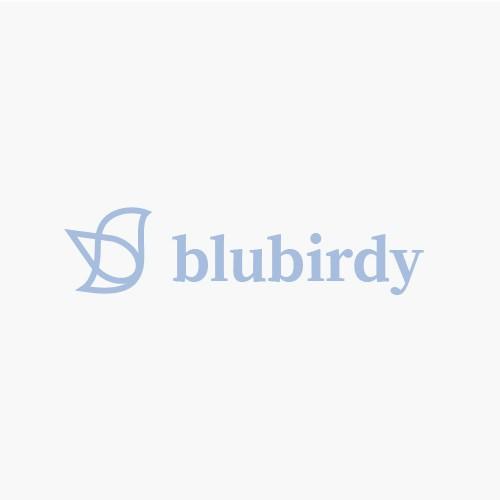 blue bird logo design for a woman brand