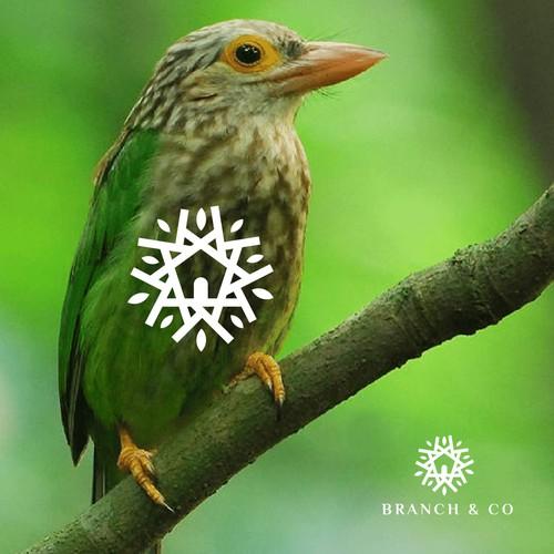 Bird House Logo Concept
