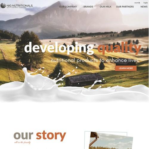 Business Website Design UX/UI Branding