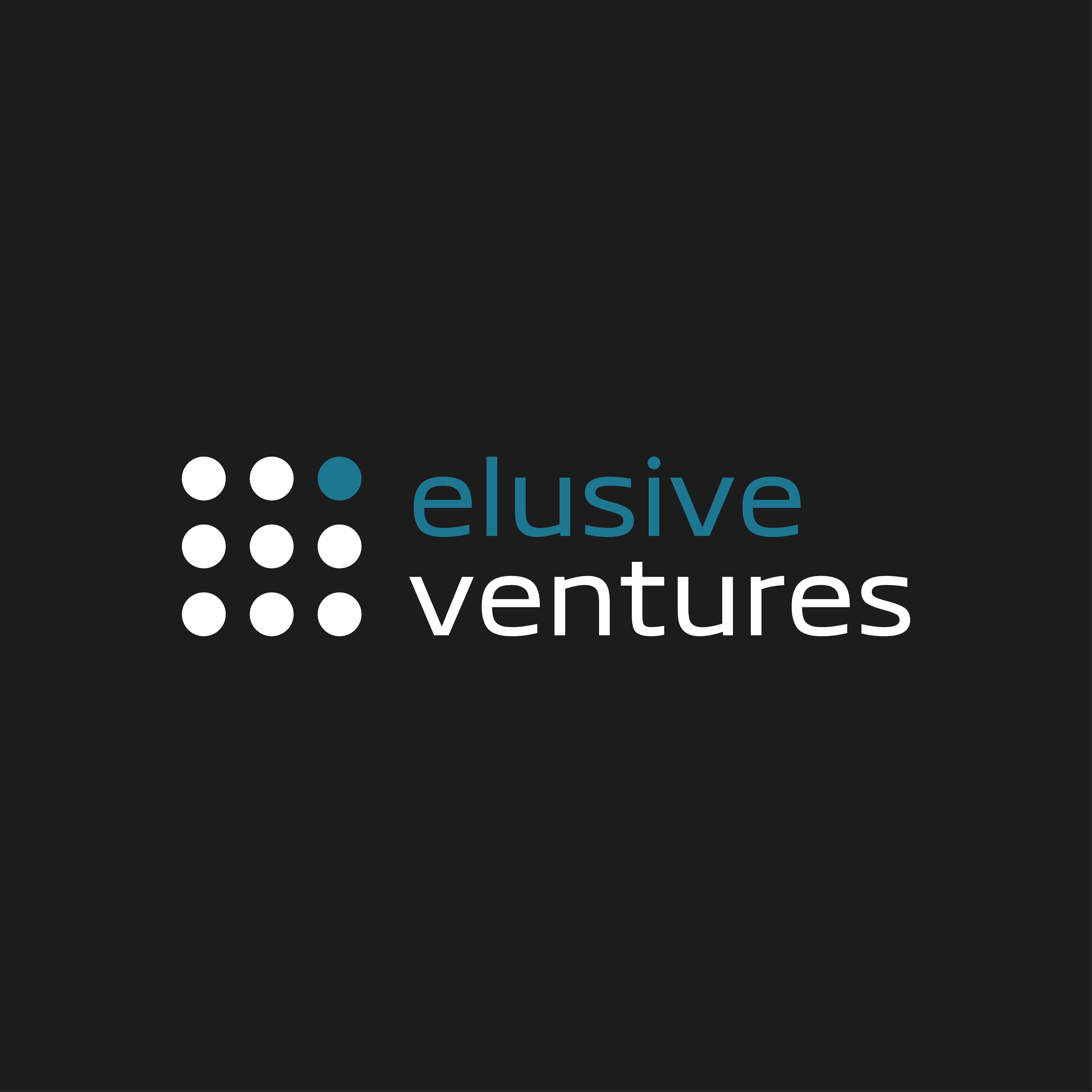 Create a clean & modern brand for Elusive Ventures!