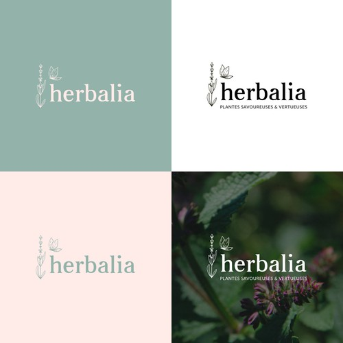 Logo for concept around edible and cosmetic herbs and plants
