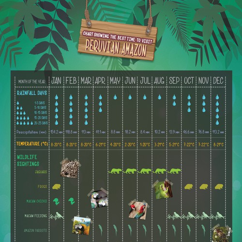 Infographic for Amazon Jungle Wildlife and Weather