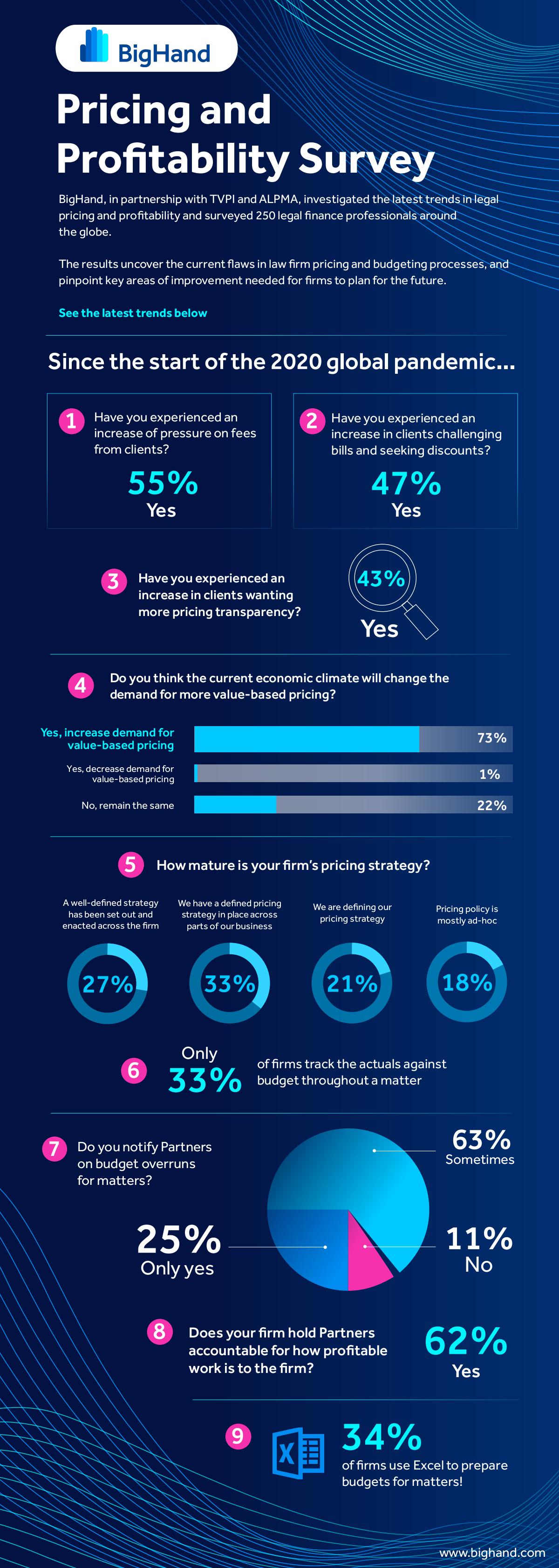 Pricing & Profitability Survey Infographic
