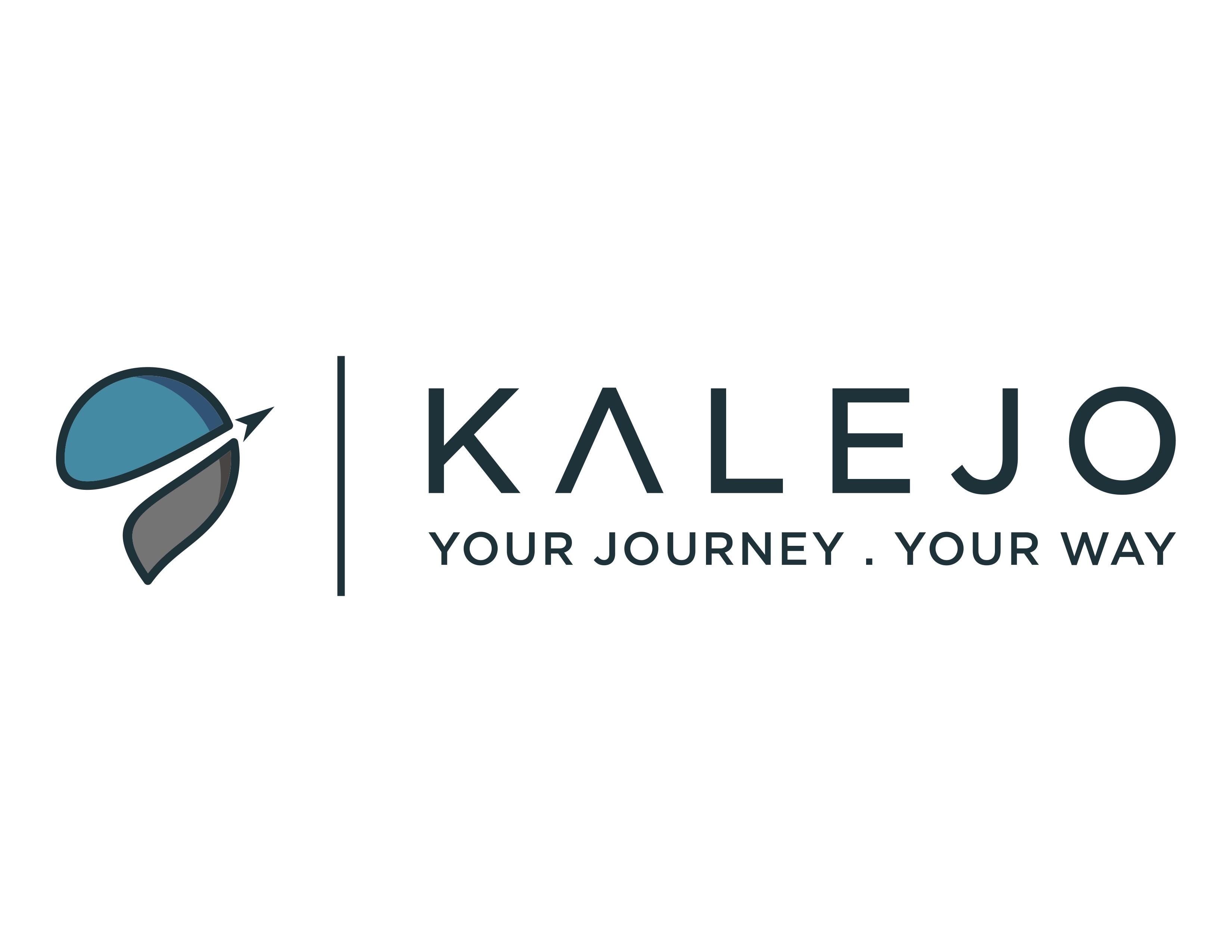 Travel site needs fresh modern logo to take off