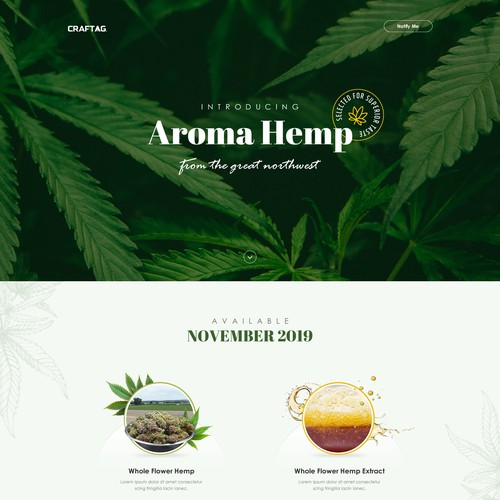 Landing Page Design For hemp manufacturer