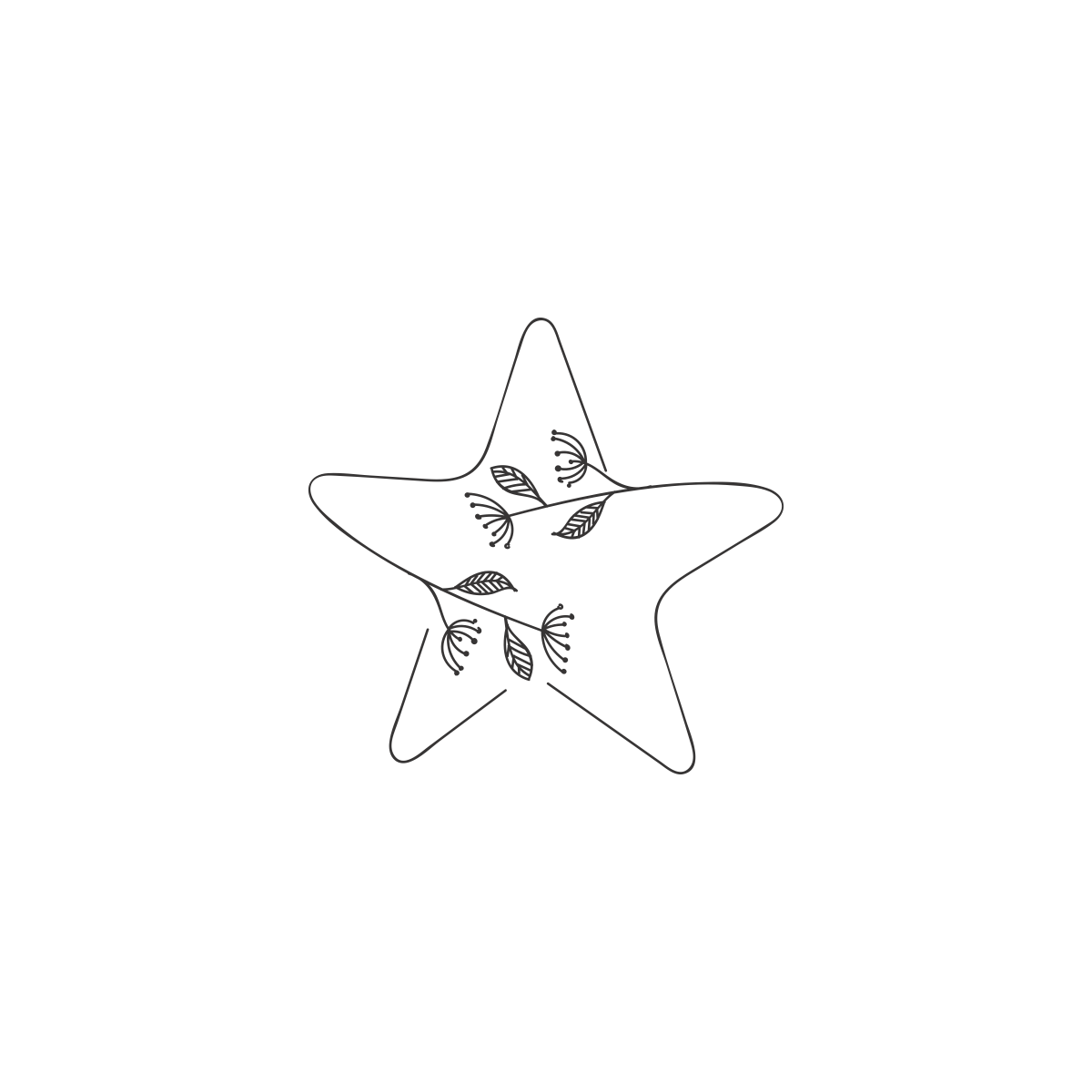 Sophisticated Design for Star