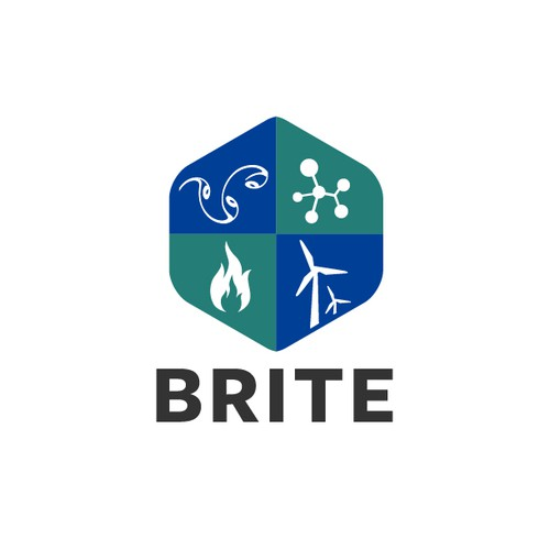 BRITE (Brussels Institute for Thermal-fluid systems and clean Energy) is a new Joint Research Group between two universities (ULB and VUB, both located in Brussels).