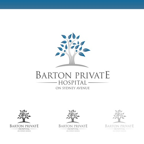 Logo Concept for Barton Private Hospital