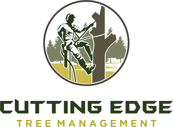 cutting edge tree management, specialists in tree removal needs a logo.