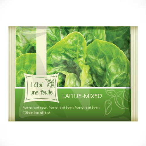 Create a logo design for a hydroponic lettuce farm