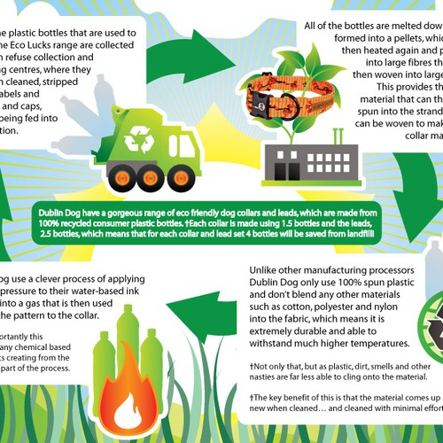 Create a fantastic infographic on pet accessories for Pet365